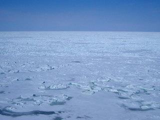 流氷原.jpg